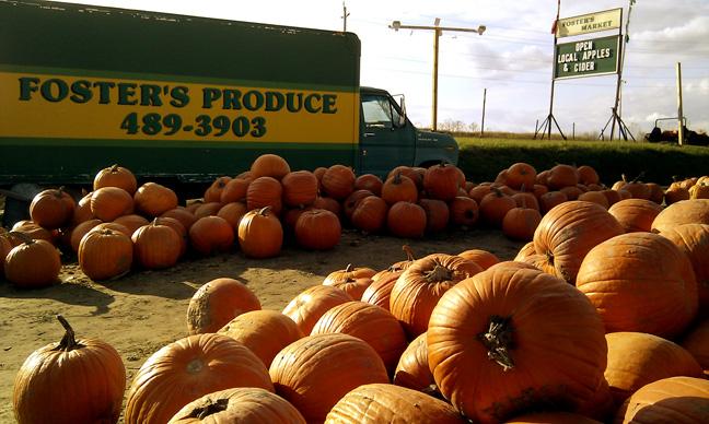 fosters-pumpkin-patch-1
