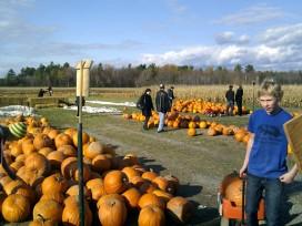 fosters-pumpkin-patch-2