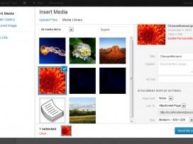 wordpress-media-manager